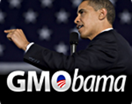 Obama's new policy registration may very well have ended all non-GMO agriculture in the US